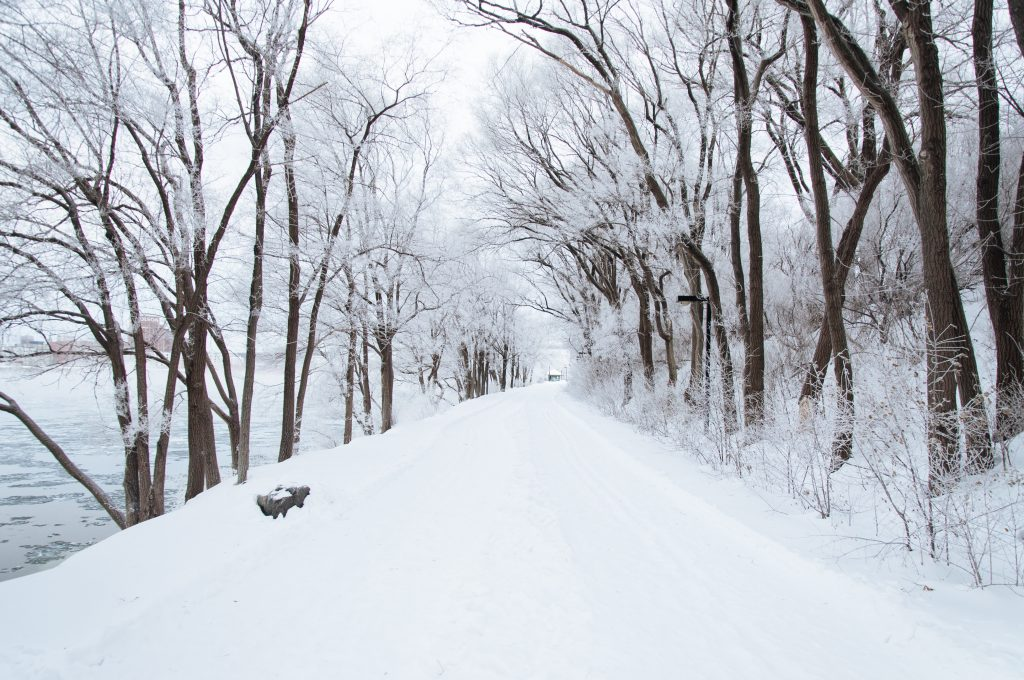 Seasonal Roads